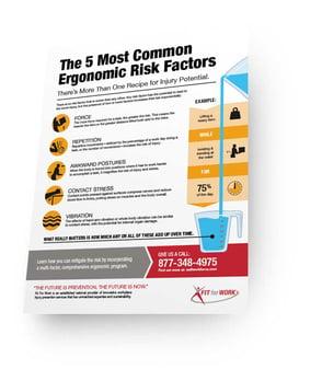 infographic_preview_ergo_factors_v2.jpg